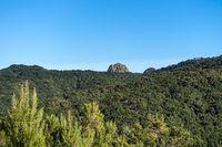 Blick über den Lorbeerwald und auf den Roque de Ojila - Insel La Gomera