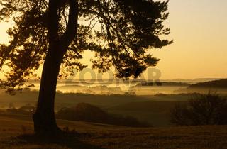 Sonnenaufgang auf der Schwaebischen Alb