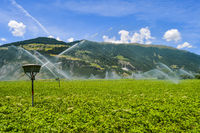 Automatic irrigation of crop fields in dolomites in Italy