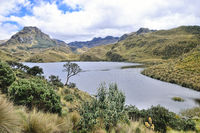 Hiking the old path from García Moreno in the Cajas National Park Ecuador
