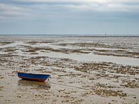 Fishing boat in the North Sea at low tide near city Wilhelmshaven, Wadden Sea National Park, Germany