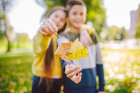 Happy twins teenagers boy and girl posing hugging each other in autumn park holding fallen yellow leaves in hand in sunny weather. Autumn season theme. Brother and sister have fun playing with leaves