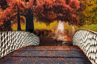 White bridge under the tree in autumn landscape