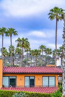 San Diego California landscape with homes and palm trees against cloudy blue sky