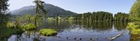 Lake Schwarzsee in a moor area near Kitzbuehel