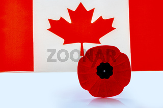 A remembrance day poppy flower with a Canadian Flag on the background.
