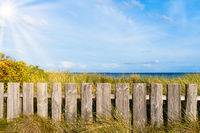 wooden fence on beach grass covered dunes against sea
