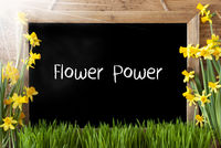 Sunny Spring Narcissus, Chalkboard, Text Flower Power