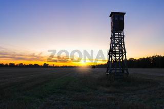 Jagd Jäger Hochsitz im Morgenlicht, Rapsfeld Landleben Weidwerk Forstwirtschaft Ackerbau, Jagdgebiet