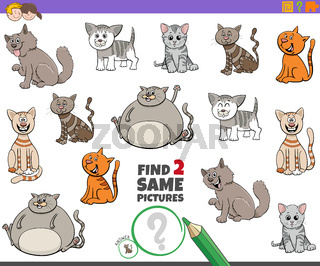 find two same cats game for children