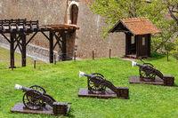 Fortress Cannons in Alba Carolina Citadel,
