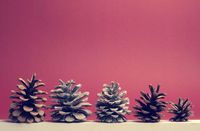Five pine cones on a white wooden board with red background