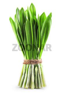 green wild garlic