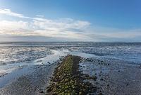 Groyne in the Wadden Sea by Dorum-Neufeld