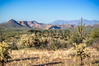 An overlooking view of Lost Dutchman SP, Arizona