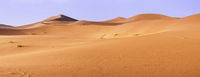 In the Sahara Desert, sand dunes to the horizon, Morocco, Africa.