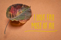 I love fall most of all  on handmade paper with dried leaf