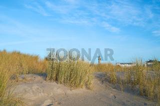 Düne am Strand von Warnemünde