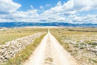 Dirt road leading trough dry rocky Mediterranean coastal lanscape of Pag island, Croatia in summertime