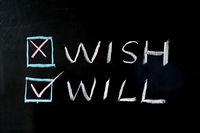 Wish versus will
