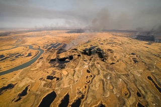 tundra fire. Burning dry grass and peat bogs, fire and smoke in tundra.