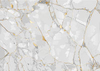 Marble Background with Golden Texture