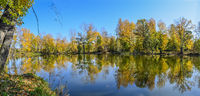 Golden autumn on lakeside - picturesque fall landscape near lake - panorama