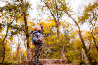 Cute child watching nature on hump in forest