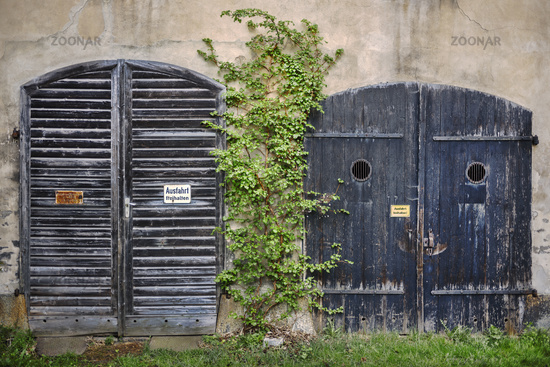 Garage doors - Almost overgrown. . .