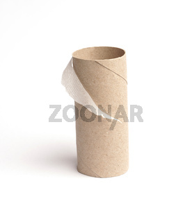 Empty roll of toilet paper