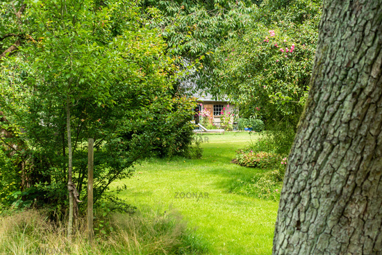Romantic meadow orchard with holiday home, Groß Siemen, Mecklenburg-Vorpommern, Germany