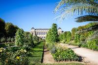 Jardin des plantes Park and museum, Paris, France