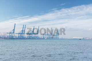 tianjin container port