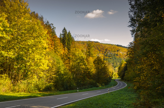 Road in autumn forest in the Upper Danube Valley, Baden-Wuerttemberg, Germany