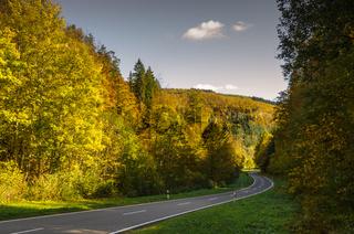 Straße durch herbstlichen Wald im Oberen Donautal, Baden-Württemberg, Deutschland