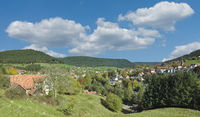 Baiersbronn in Black Forest,Germany