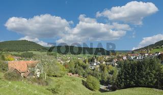 Baiersbronn im Schwarzwald,Baden-Wuerttemberg,Deutschland