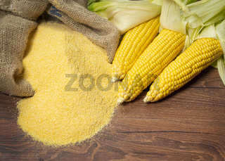 Ripe young sweet corn cob and cornmeal on wooden background