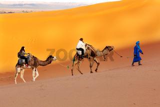 Camel trek through the desert of Morocco