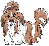 Shih Tzu purebred dog cartoon illustration
