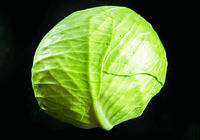 Green cabbage isolated on black