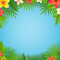 Tropical Leaves And Flowers With Blue Background