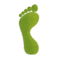 Ecological footprint concept illustration. Grass patch footprint.