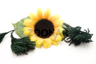 Sonnenblume mit Grünzweig