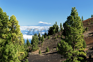View from La Palma to Teide on Tenerife
