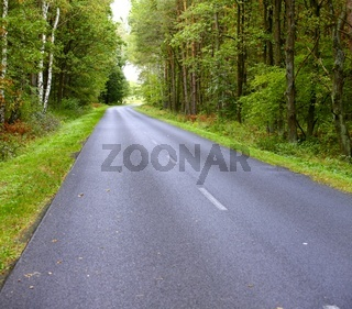 Landscape in Poland asphalt road in forest early autumn