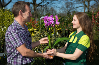 Gardener giving an orchid to customer or client