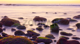 Blurred sea water and mossy stones