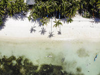 Beach at Siquijor Island, The Philippines - Aerial Photograph