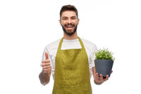 happy male gardener with flower showing thumbs up